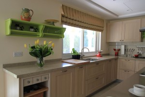 DH Green Community West Villa Kitchen Project by Goettling Interiors